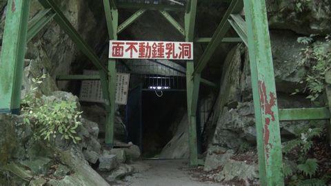 tanuki47.jpg