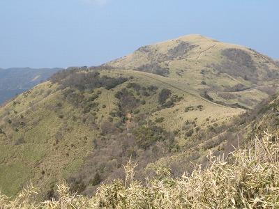 冬の達磨山
