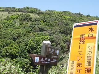 nishia3.jpg