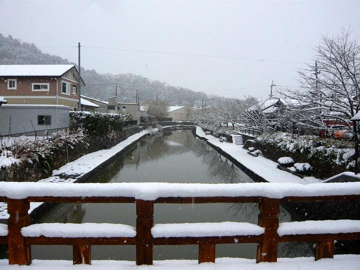 初雪食堂天ぷら中華9