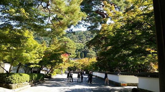 南禅寺 1