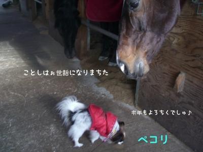 091207nasu7.jpg