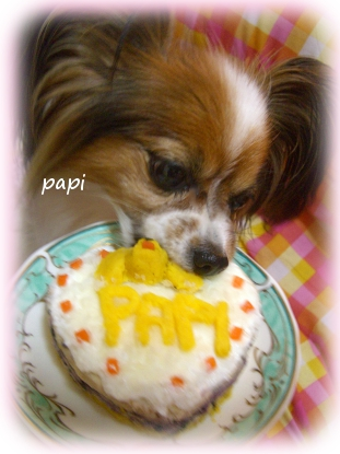 birthpapi2010-2.jpg