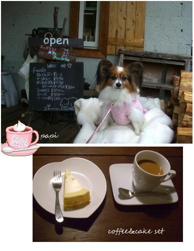 dogcafe1003-1.jpg