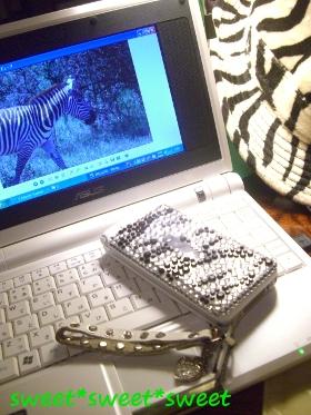 zebradeco.jpg