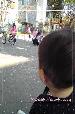 Image496.jpg