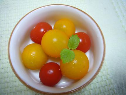 家庭菜園 プチトマト