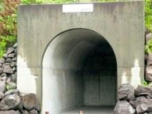 地理のページ-桜島