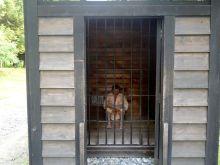 中学受験社会のブログ-懲罰房