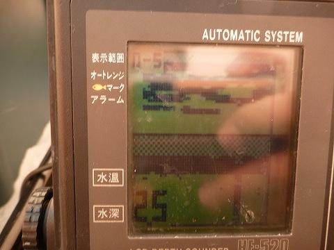 P1010873b.jpg