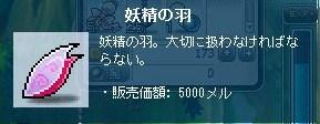 Maple111204_004804.jpg