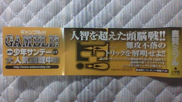 ギャンブル 5巻 帯A