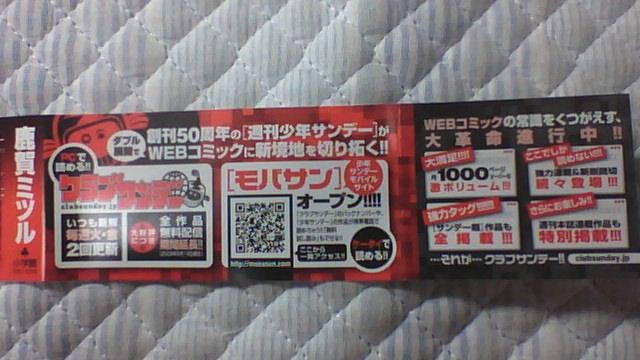 ギャンブル 11巻 帯B