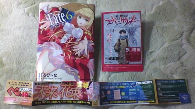 FateEX 6巻