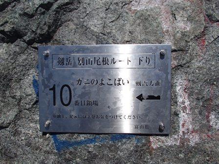 P8110096-1.jpg