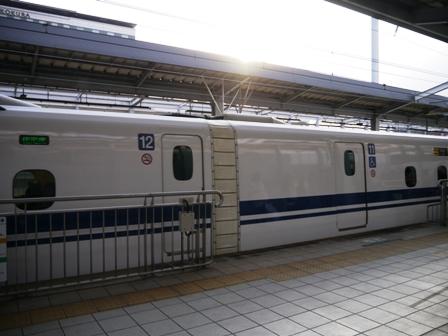 P1010936.jpg
