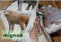 mignonsyon