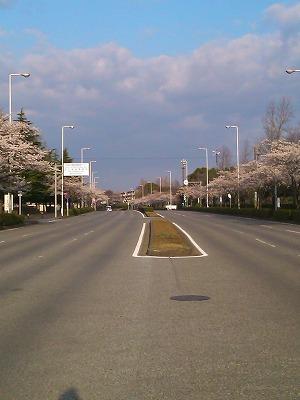 100404駅前通り②
