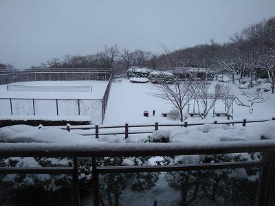 100417雪景色1