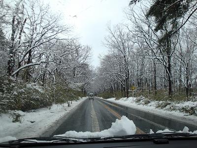 100417雪景色2