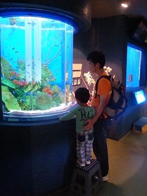 100917水族館①