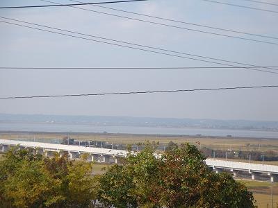 101121印旛沼