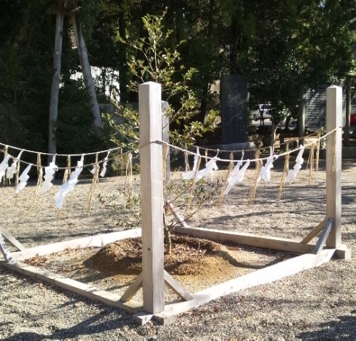 toriiato.jpg