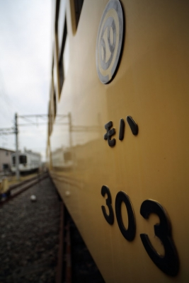5D3A3495.jpg