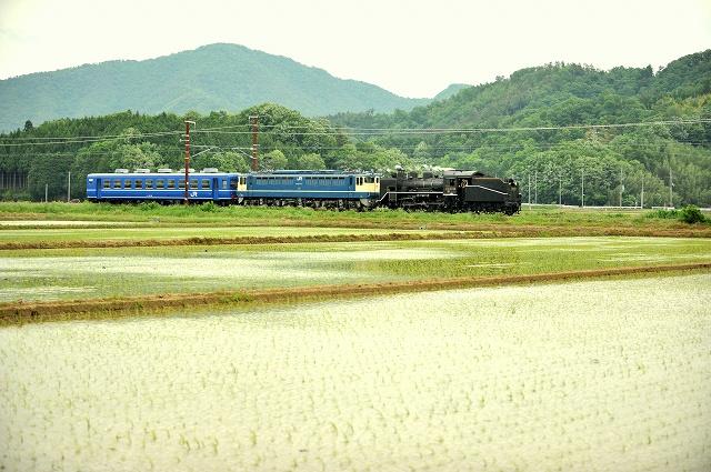DSC_3755-2.jpg
