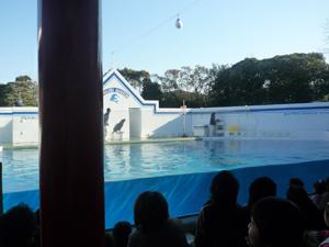 品川水族館2