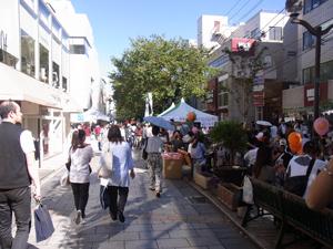 自由が丘女神祭り2010