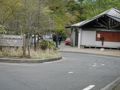 2013丹沢02