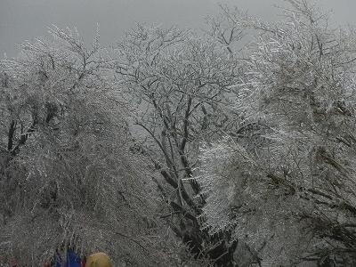 2013丹沢45
