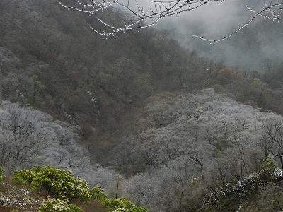 2013丹沢48
