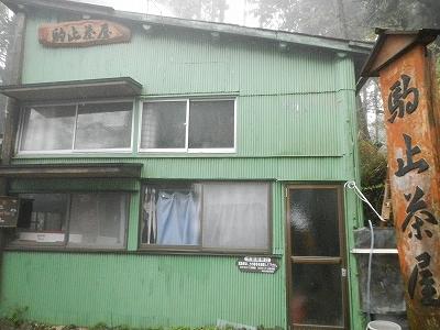 2013丹沢53