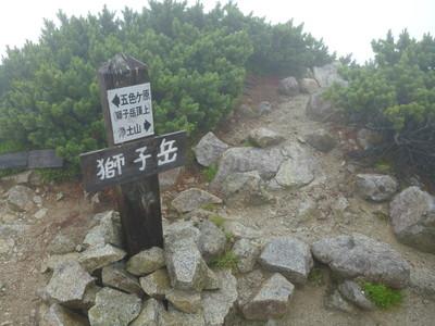130801薬師岳五色ヶ原28