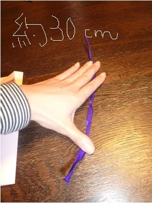 30cm.jpg