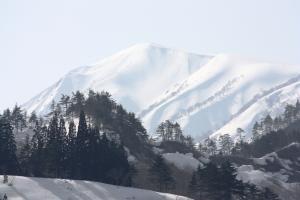 0320浅草岳の様子