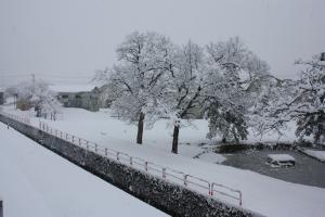 4月17日雪の様子