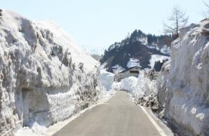 只見駅横の雪の壁