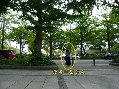 P1220415_20100602221747.jpg