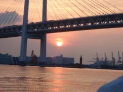コピー ~ 2010.7.25 東京湾口ブリ 007