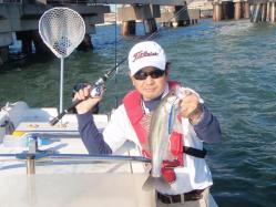 コピー ~ 2010.11.3湾奥シーバスボート操船 002