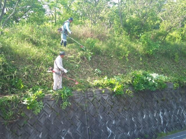 草刈りをする会員