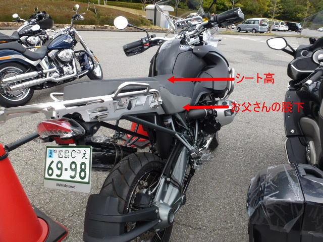 P1070077.jpg