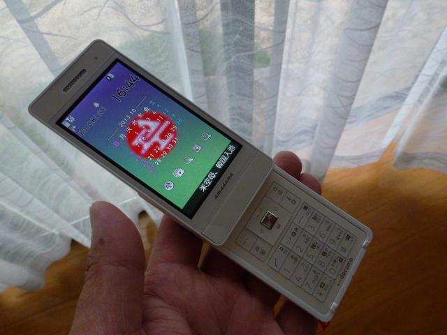 P1100603.jpg