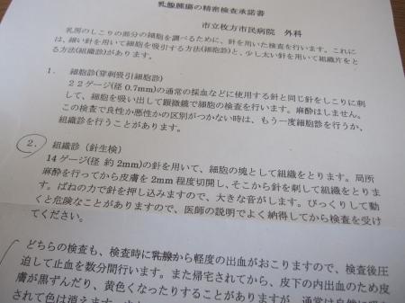 2013_04_10_01.jpg