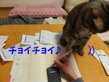 DSCF7829_convert_20130207110155.jpg