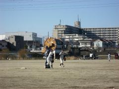 2012.1.29 シュン