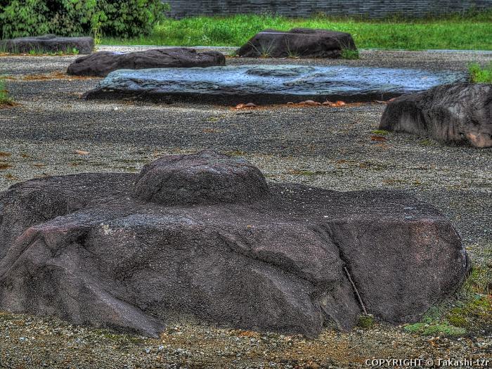 紀伊国分寺跡